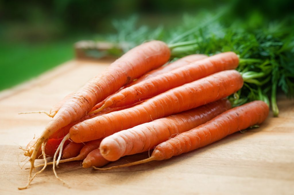 agriculture-carrots-close-up-143133